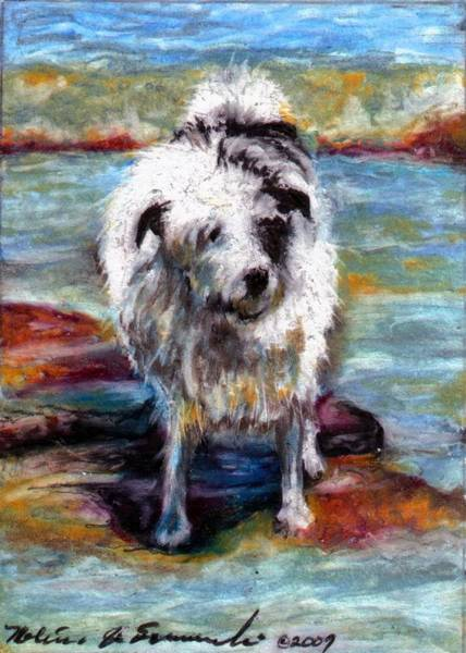 Furry Drawing - Maui On The Beach by Melissa J Szymanski