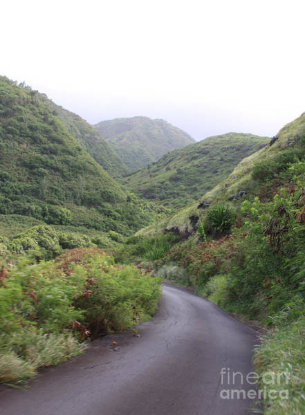 Photograph - Maui Road Through The Hills by Robin Maria Pedrero