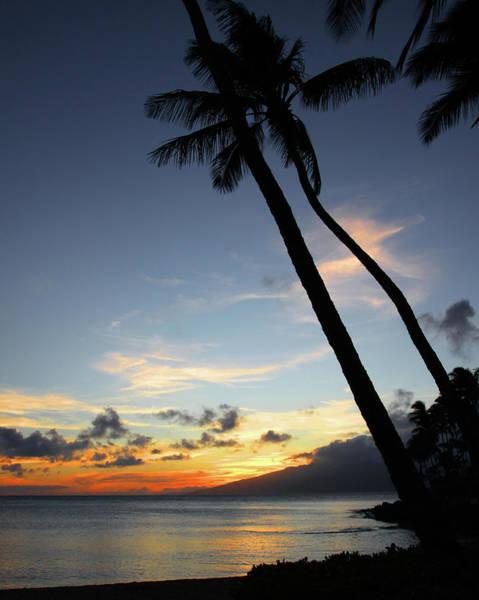 Maui Sunset With Palm Trees Art Print