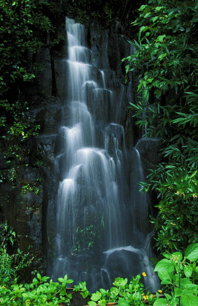 Wall Art - Photograph - Maui Waterfall by Ron Dahlquist - Printscapes