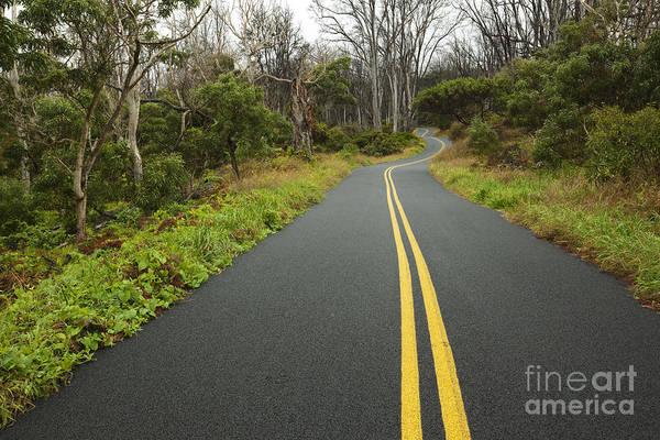 Photograph - Mauna Loa Road - Hawaii by Charmian Vistaunet