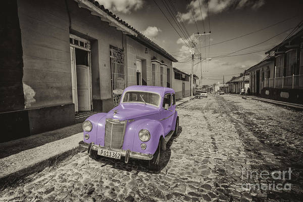 Wall Art - Photograph - Mauve Prefect  by Rob Hawkins