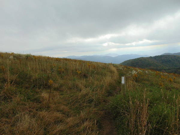 Photograph - Max Patch 2 by Richard Parks