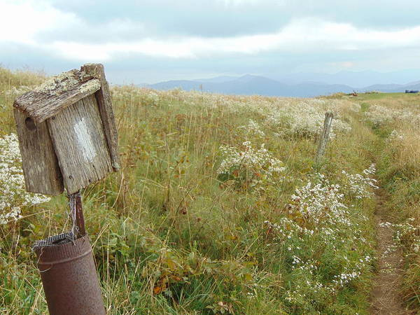 Photograph - Max Patch 4 by Richard Parks