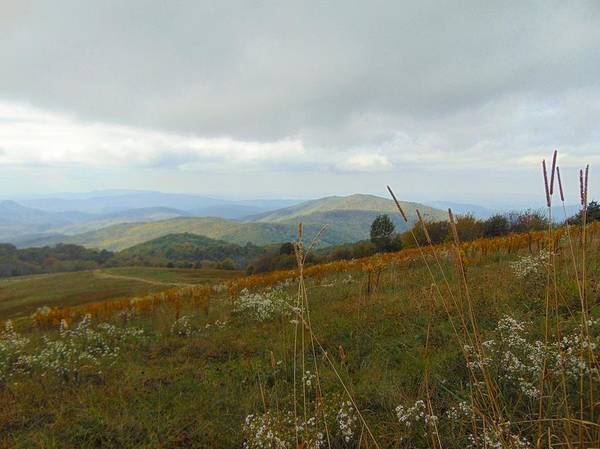 Photograph - Max Patch 5 by Richard Parks