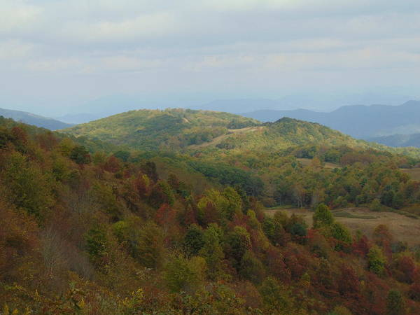 Photograph - Max Patch Colors by Richard Parks