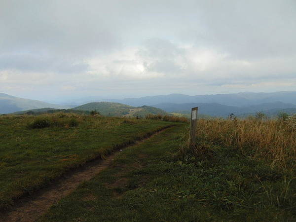Photograph - Max Patch by Richard Parks