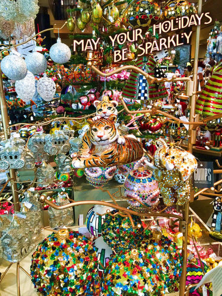 Photograph - May Your Holidays Be Sparkly No Border by Bonnie Follett