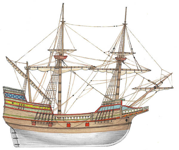 Wall Art - Drawing - Mayflower by The Collectioner