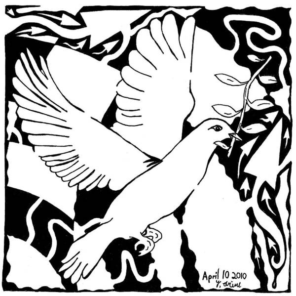 Olive Branch Drawing - Maze Of A White Dove by Yonatan Frimer Maze Artist