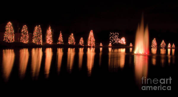 Photograph - Mcadenville Christmas Tree Lights by Jill Lang