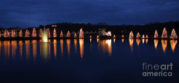 Photograph - Mcadenville Lake With Christmas Lights by Jill Lang