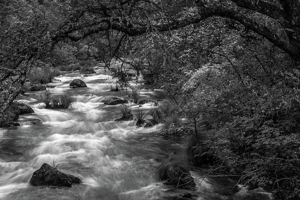 Wall Art - Photograph - Mcarthur-burney Falls Creek Black And White by Bill Gallagher