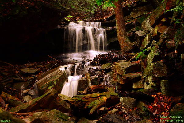 Wall Art - Photograph - Mcconnells Mill Waterfall by Lisa Wooten