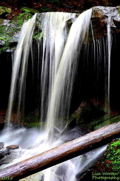 Photograph - Mcconnells Mills Waterfall by Lisa Wooten