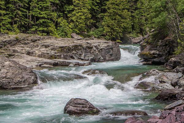 Photograph - Mcdonald Creek 8128  by Teresa Wilson