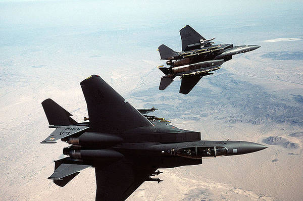 Wall Art - Photograph - Mcdonnell Douglas F-15 Eagles Military Exercises by L Brown