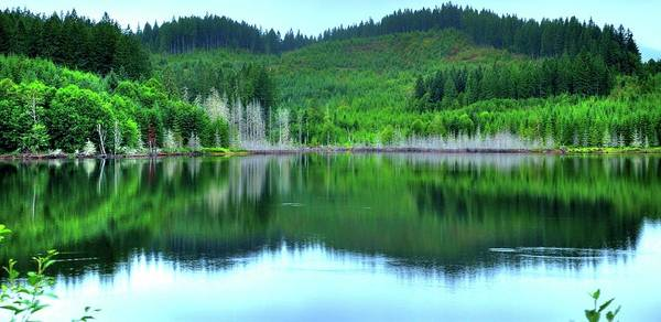 Photograph - Mcguire Reservoir by Jerry Sodorff