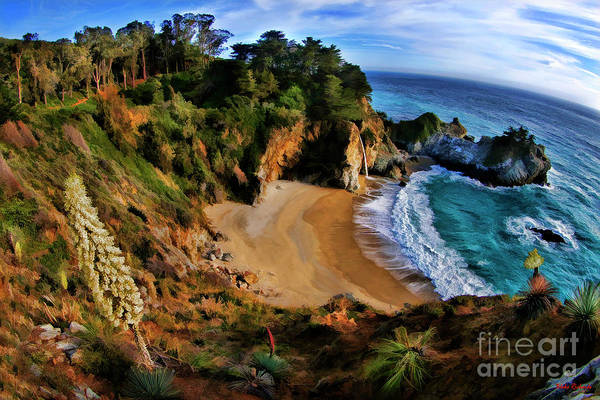 Photograph - Mcway Falls Flower And Cove by Blake Richards