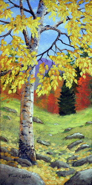 Wall Art - Painting - Meadow Birch In Autumn by Frank Wilson