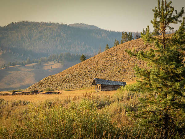 Photograph - Meadow Cabin by Mark Mille