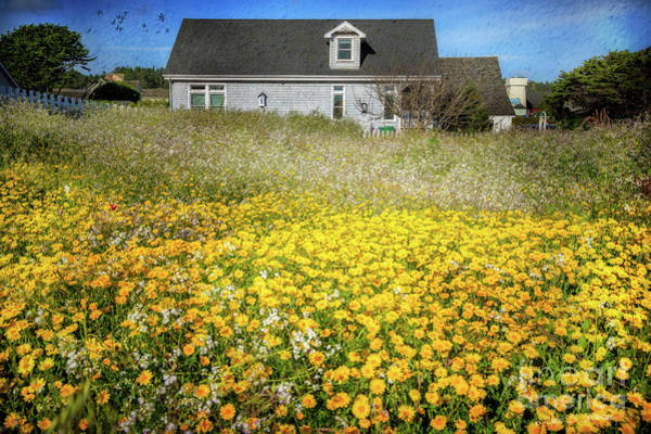 Photograph - Meadow House by Craig J Satterlee