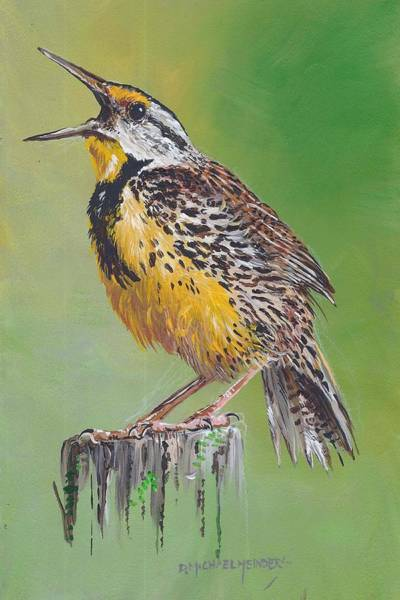 Meadowlark Painting - Meadow Lark by D Michael Meinders