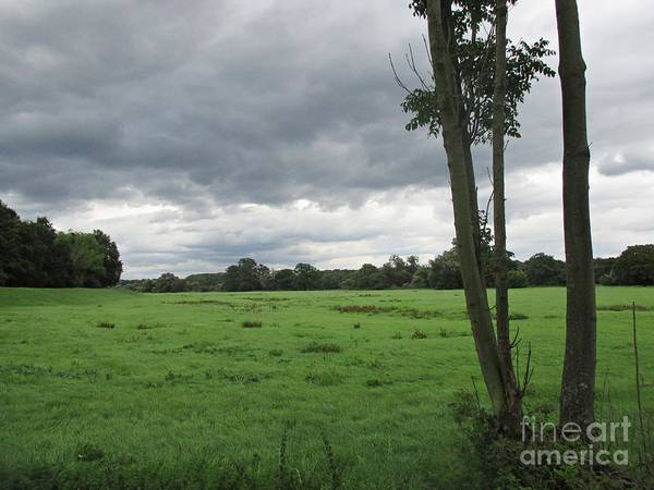 Photograph - Meadow Near Coswig by Chani Demuijlder