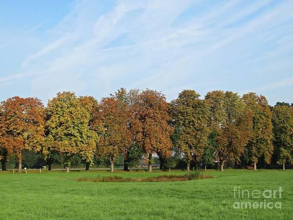 Photograph - Meadow Near Telgte by Chani Demuijlder
