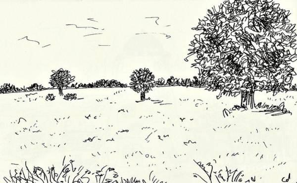 Beautiful Park Drawing - Meadow Near Woerlitz by Chani Demuijlder