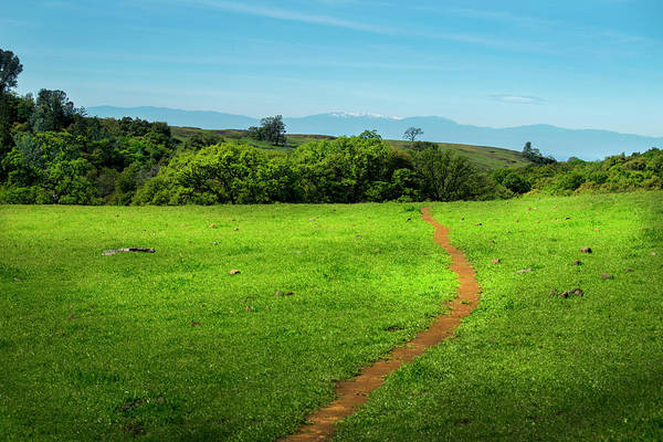 Photograph - Meadow Trail by Frank Wilson