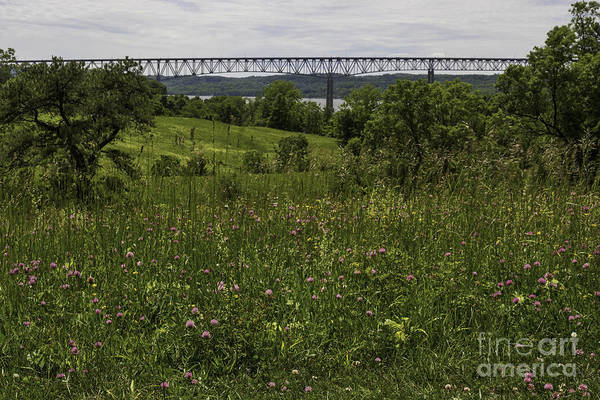 Catskills Photograph - Meadow View Of Rhinecliff Bridge by DAC Photo