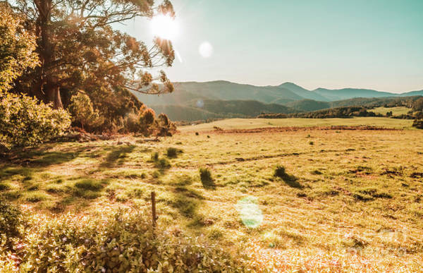 Grassland Photograph - Meadows And Mountains by Jorgo Photography - Wall Art Gallery