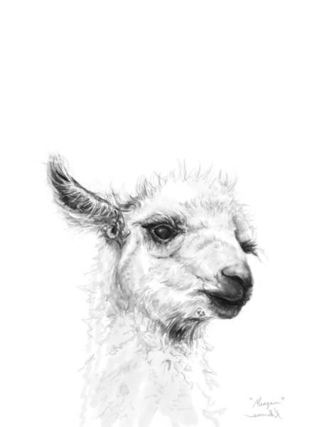 Llama Drawing - Meagan by K Llamas