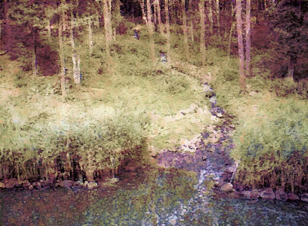 Mixed Media - Meandering Woodland Stream by Susan Maxwell Schmidt