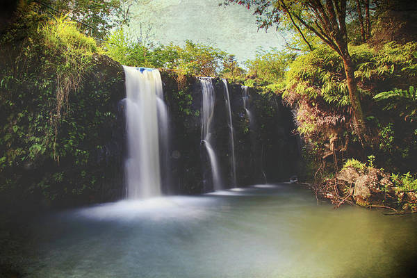 Maui Photograph - Meaning by Laurie Search
