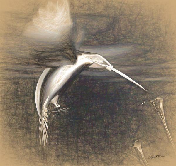 Reflective Digital Art - Mechanical Hummingbird by Cynthia Decker