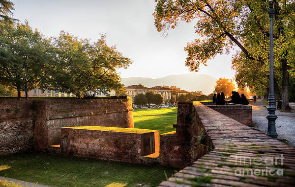 Photograph - Medieval Fortress Wall In Lucca , Italy by Ariadna De Raadt