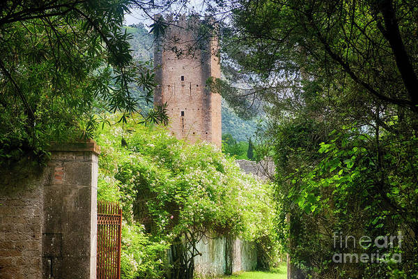 Wall Art - Photograph - Medieval Garden Gate  by George Oze