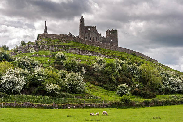Photograph - Medieval Rock Of Cashel Ireland by Pierre Leclerc Photography
