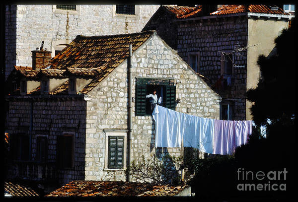 Stari Grad Photograph - Medieval Town-dubrovnik Resident by Morris Keyonzo