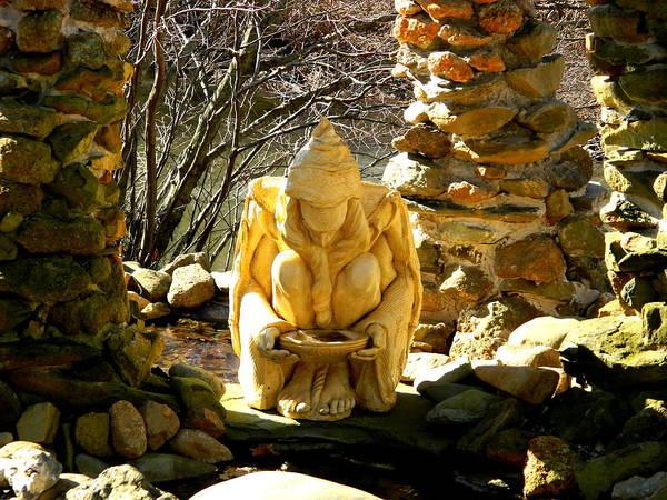 Wall Art - Photograph - Meditation Garden by Arlane Crump