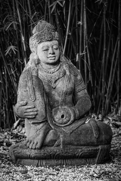 Photograph - Meditation In The Bamboo Forest 2 by Andy Crawford