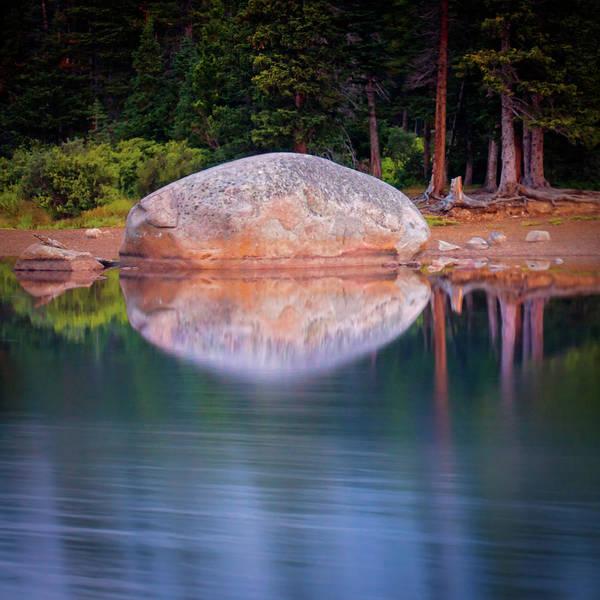 Photograph - Meditation by John De Bord