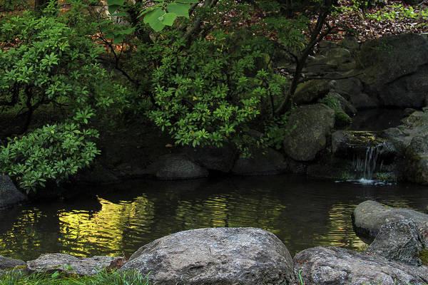 Meditation Pond Art Print