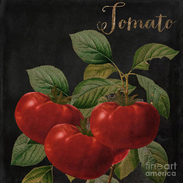 Wall Art - Painting - Medley Tomato by Mindy Sommers