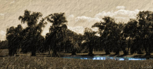 Photograph - Meet Me By The Willows by Lauren Radke