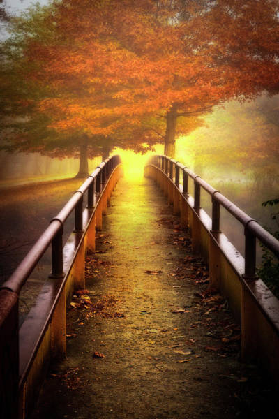 Photograph - Meet Me On The Bridge At Sunrise by Debra and Dave Vanderlaan