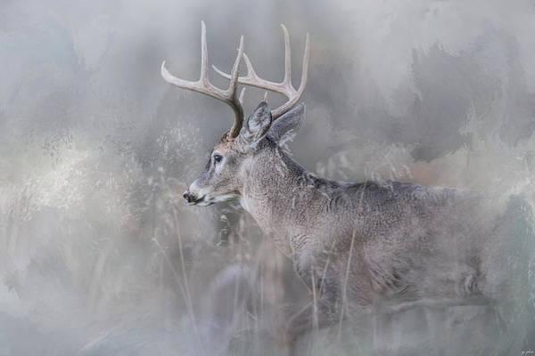 Photograph - Meeting Winter Head On by Jai Johnson