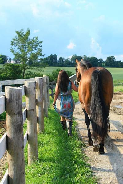 Photograph - Melissa-millie30 by Life With Horses